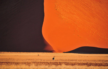 Top 12 Most Beautiful Deserts In The World
