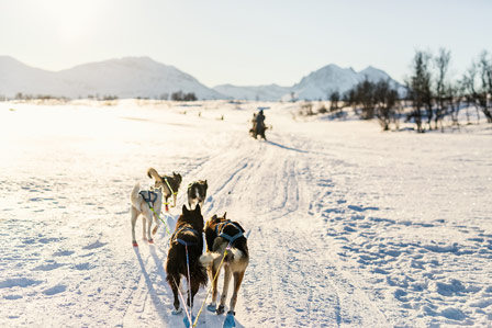 Practical information on Finnish Lapland