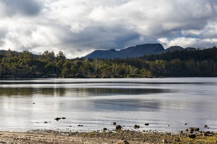 National Park Cradle Mountain-Lake St Clair - Tasmania - Australia