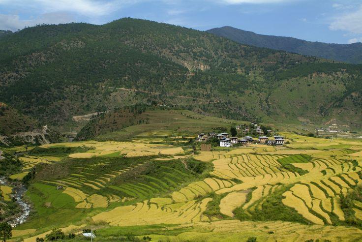 Punakha - Bhutan