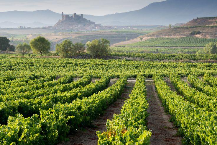 San Vicente de la Sonsierra - Rioja - Spain