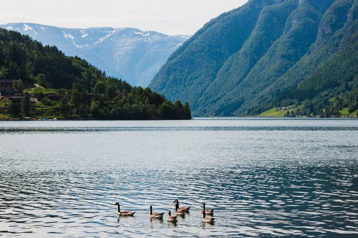 Ulvik - Norway