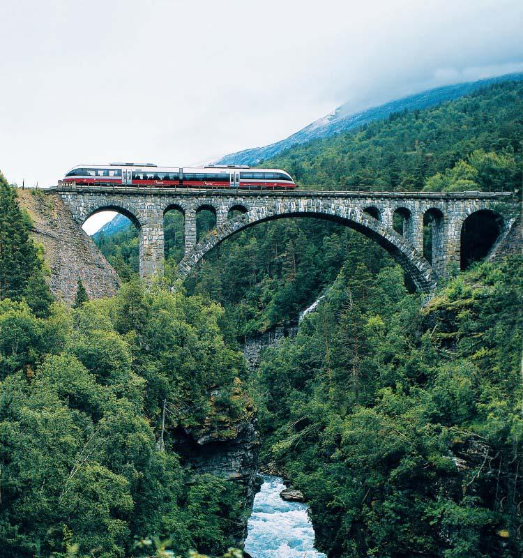 Train Oslo / Bergen - Norvège