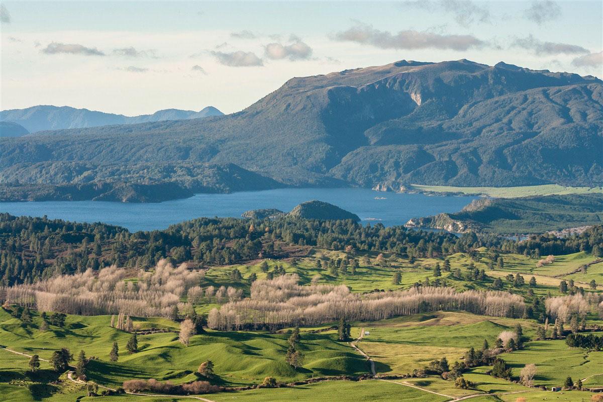 Lac Okaro - Région de Rotorua - Ile du Nord - Nouvelle-Zélande