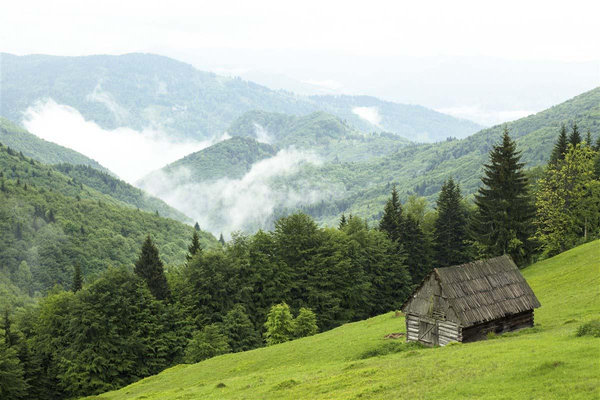 Judet de Maramures - Transylvanie - Roumanie