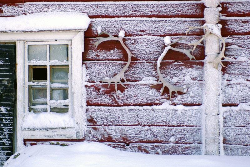 Ferme de Rennes - Laponie - Finlande