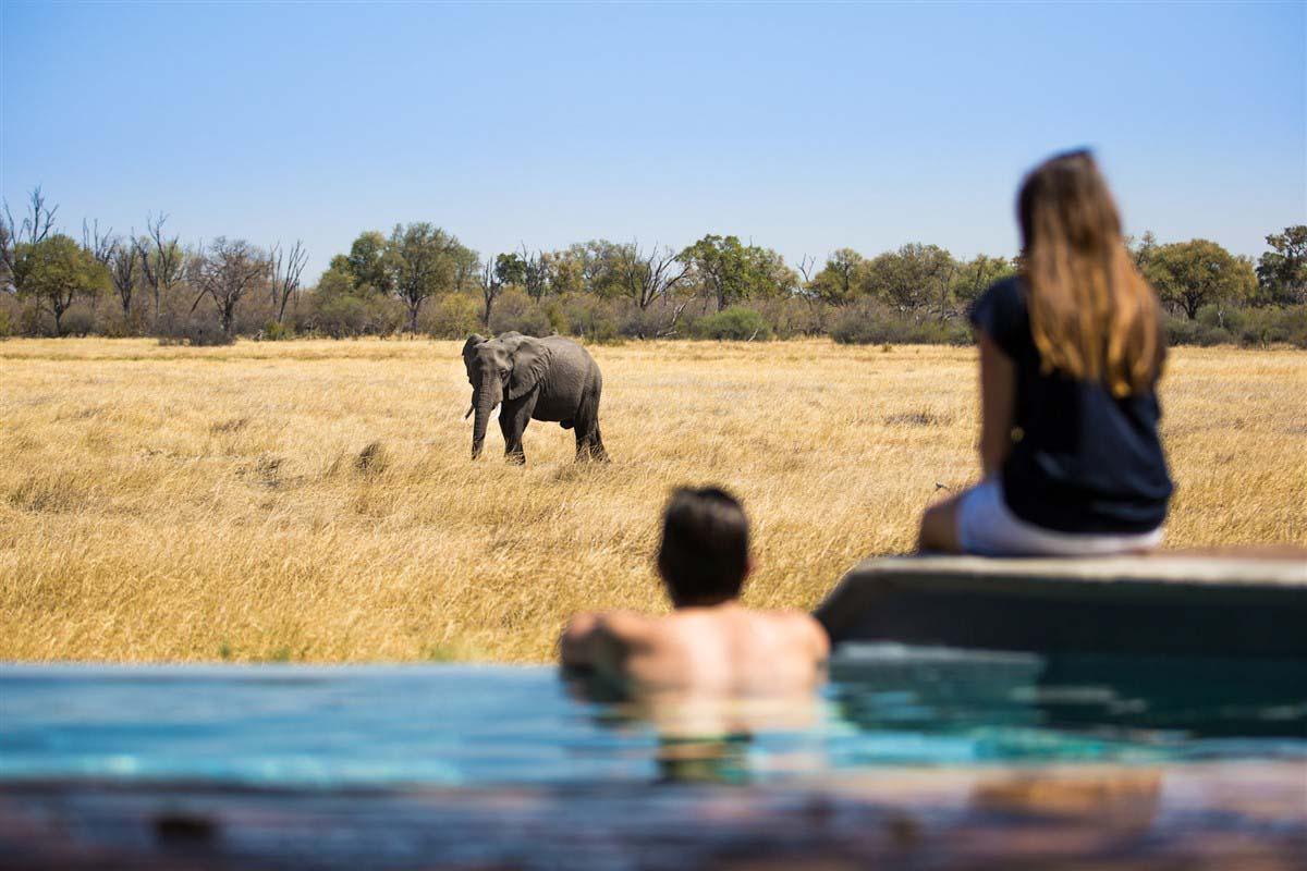 Little Machaba - Khwai - Botswana