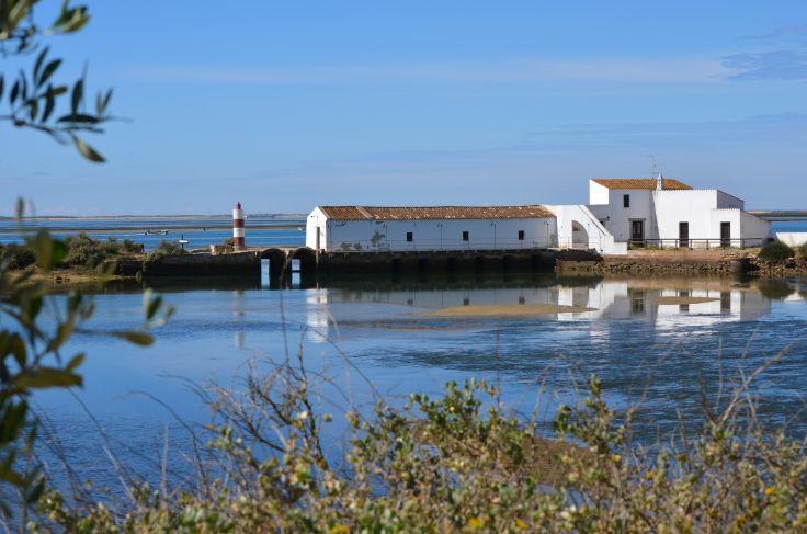 Ria Formosa - Algarve - Portugal