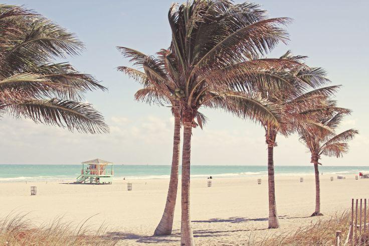 Miami Beach - Florida - United States