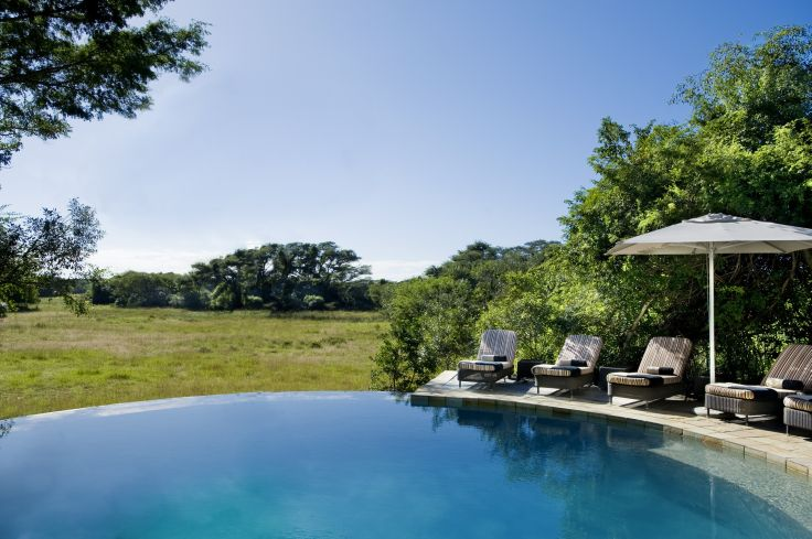 Phinda Forest Lodge - Private Phinda Resource Reserve - South Africa