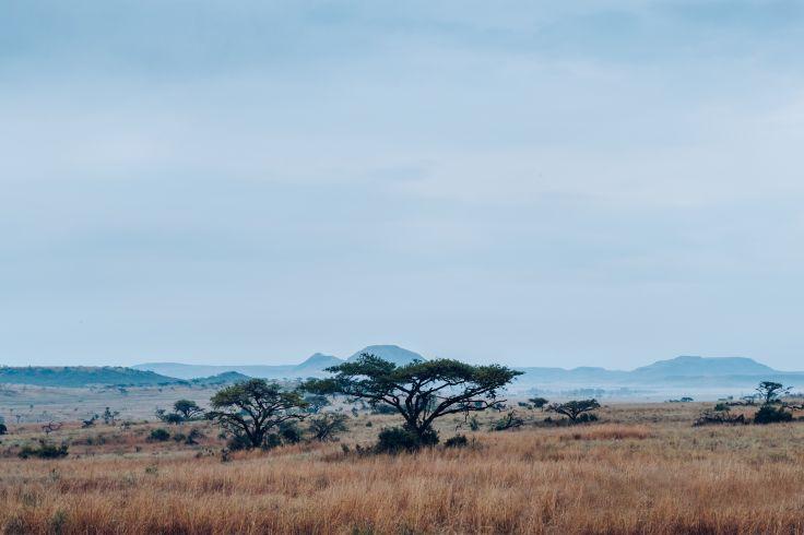 KwaZulu-Natal - South Africa
